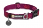 Preview: Ruffwear Hoopie™ Collar Lotus