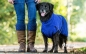 Preview: DryUp Cape Hundebademantel Blueberry